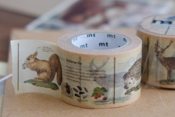 mt masking tape ex encyclopedia / animal