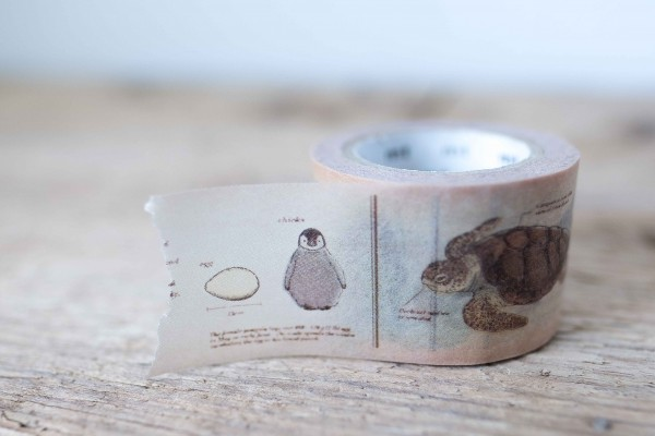 mt masking tape ex encyclopedia / marine creature