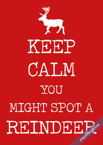 Keep calm Reindeer