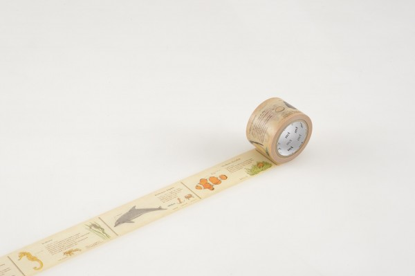 mt masking tape ex encyclopedia / marine creature
